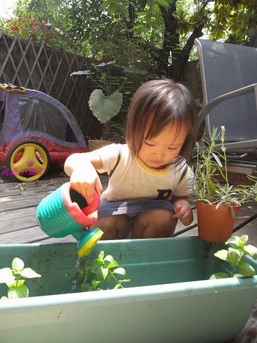 你拍攝的 2小園丁澆花。
