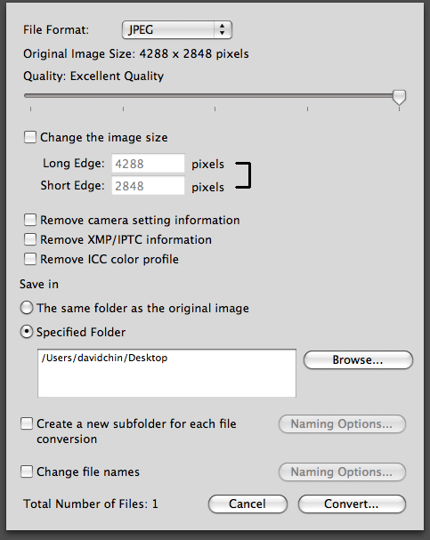 ViewNX JPEG conversion settings