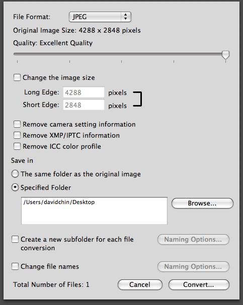 ViewNX JPEG conversion settings