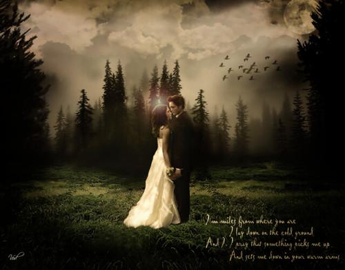 Edward & Bella by -♥LionLamb-.