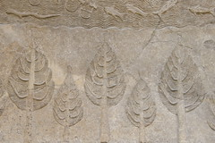 Delicacy (Hélder Cotrim) Tags: inglaterra england london unitedkingdom olympus forgotten londres limestone britishmuseum less weak reinounido menosinteressante