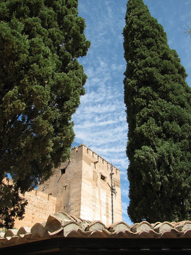 Trees and Tower, Alhambra