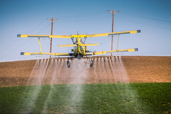 Northern Idaho Crop Duster (JGemplerPhotography) Tags: sky yellow plane airplane flying wings aviation farming spray crop ag duster agriculture propeller schweizer prop biplane spraying cropduster agcat g164