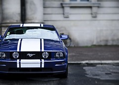 2009-06-09-001 (Alex //Berlin _ Alexander Stbner) Tags: blue berlin ford alex car photoshop lens photography mac nikon exposure bokeh d 85mm explore pony mm mustang 300 blau nikkor f18 18 85 pps streetshot d300 cs4 18d cameraraw 85mmf18d asphotography alexberlin