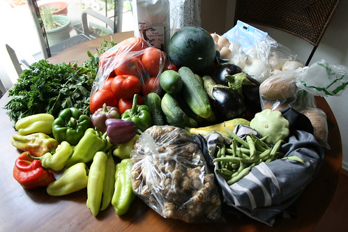 CSA delivery #5
