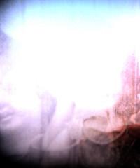 (DANIELLEROCKSPHOTOGRAPHY) Tags: 120 film square lomo lomography medium format dianaf 5x5 closeuplens 55mmwideangle