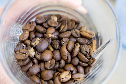 Kopi Luwak Coffee Beans 2