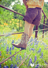 Fence & Boots | Bench Monday #22 (Chasing J Bird {rosie.f}) Tags: fence texas boots hillcountry bluebonnets willowcityloop cowgirlboots texascowgirl texasbluebonnets benchmonday prettypresets