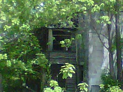 Not much here (ruffiesgirl98) Tags: house abandoned decay kentucky plantation