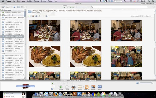 Nikon D90 RAW / NEF thumbnails in Picasa