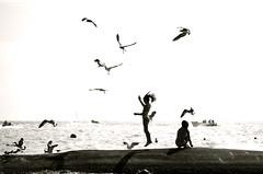 Vuelta por el universo (Mister Blur) Tags: sea blackandwhite bw blancoynegro beach mexico mar seagull playadelcarmen playa highkey gaviota thereef cerati quintanaroo d60 playacar otw clavealta bwdreams photographyrocks graciastotales hastasiempre thereefplayacar flickraward vueltaporeluniverso mexico rubyphotographer flickrlovers wanderinggypsies rocoeno