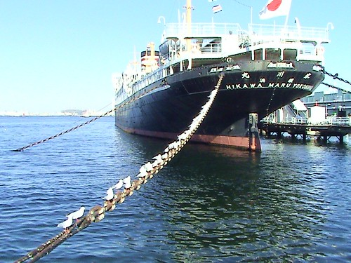 big japanese ship and seagulls