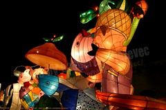 2007-03-03 1135 2007 Taipei Lantern Festival (Badger 23 / jezevec) Tags: festival night lights pig colorful taiwan parade taipei formosa float  hai taipeh boar  lanternfestival 2007  chineselantern  chiangkaishekmemorialhall  republicofchina yearofthepig    aonuevochino  capodannocinese   taiwn chaingkaishek   20070303    tapeh    badger23 shangyuanfestival ftedeslanternes     lyhtyjuhla chinesischeslaternenfest