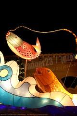 2007-03-03 1128 2007 Taipei Lantern Festival (Badger 23 / jezevec) Tags: festival night lights pig colorful taiwan parade taipei formosa float  hai taipeh boar  lanternfestival 2007  chineselantern  chiangkaishekmemorialhall  republicofchina yearofthepig    aonuevochino  capodannocinese   taiwn chaingkaishek   20070303    tapeh    badger23 shangyuanfestival ftedeslanternes     lyhtyjuhla chinesischeslaternenfest