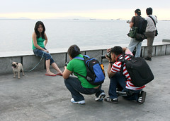 meta on manila bay (_gem_) Tags: street city people urban dog pet delete10 delete9 delete5 delete2 delete6 delete7 philippines meta photographers delete8 delete3 delete delete4 manila leash metaphotography dslr manilabay roxasboulevard metromanila