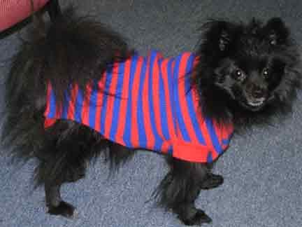 Prissy-sweater1