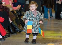 01 Decembrie 2008 » Ziua Natională a României