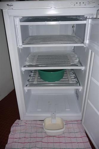 congelateur (1)