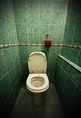 poisoned apple (Nannile) Tags: apple air toilet fresh spray clean heavy sick secrets odour poisoned 30secretsin30days refreshener
