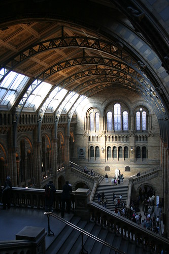 Darwin bathed in light, the Great Hall, Natural History Museum