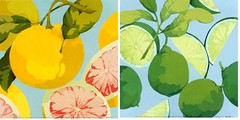 grapefruits & limes