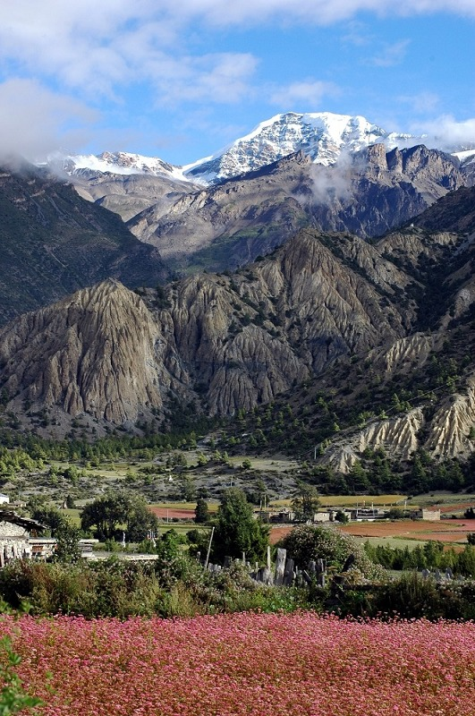 來去尼泊爾爬山
