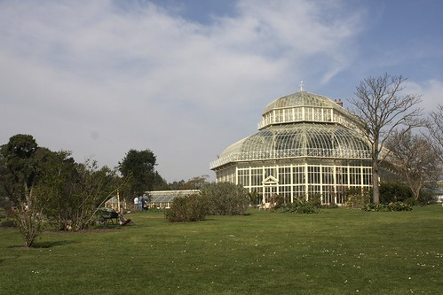 Hothouse in Midday Sun