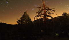 Orion and Sirius setting behind Mt San jacinto