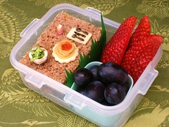 mini meal bento (sherimiya ) Tags: cute fruit lunch miniature kid little mini sandwich tiny snack meal bento workofart sherimiya