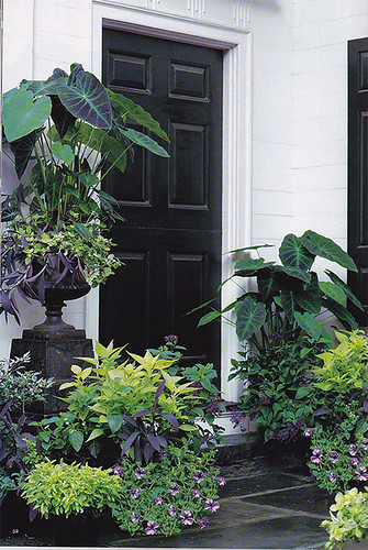 martha stewart living: Black Door and Planters