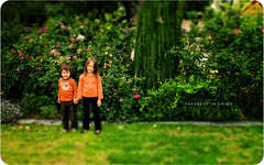 Partners in Crime (isayx3) Tags: light portrait kids 35mm garden children lens outside nikon natural bokeh sister brother siblings faux nikkor f18 18 d3 madscientist dx tiltshift