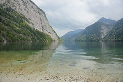 Koenigsee Shore (mattrkeyworth) Tags: lake mountains reflection germany bayern deutschland bavaria see berchtesgaden allemagne spiegelung schoenau gebirge koenigsee berchtesgadenerland a900 sonya900 mattrkeyworth