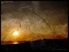 Textures of the Sunset (Kirsten M Lentoft) Tags: sunset sea sun water grass denmark silhouettes northsea textured jutland jylland vesterhavet blåvand blaavand texturebyghostbones kirstenmlentoft
