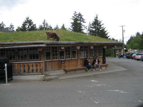 Goats on Roof Old Country Market store at Coombs,BC