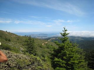Hike Down Mt Tam