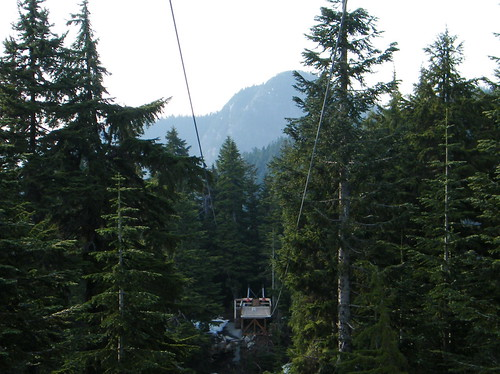 Grouse Mountain - Zipline