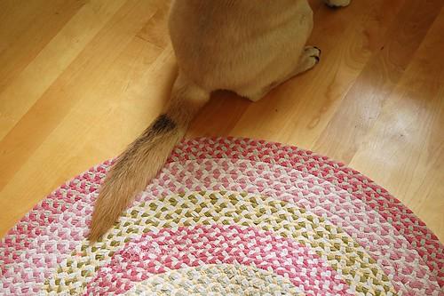 Pink braided rug.