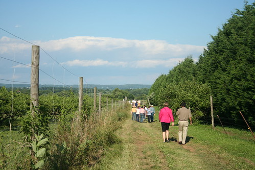 walking to potomac vegetable farm