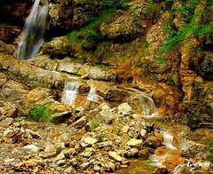 CASCATA    [Dolomiti Friuli] (ivack@) Tags: river italia colore searchthebest fiume natura roccia acqua ruscello colori paesaggi montagna dolomiti friuli udine cascate cascata torrente friuliveneziagiulia fiumi moggio torrenti ivack moggioudinese ivck montagnadelfriuli