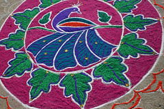 Pondicherry rangoli 11 (Pondspider) Tags: india color colour vibrant tamilnadu pondicherry rangoli pondspider
