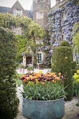 P5161844 (iandjbannerman) Tags: gardens may opengardens mayflowers hanhamcourt