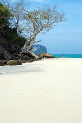 Bamboo Island _ Phi Phi Island (MartinePasquini) Tags: ocean trip travel blue trees sunset sea summer sky holiday tree tourism beach nature water statue giant relax thailand island temple coast sand holidays rocks asia paradise peace tour phi phiphi bangkok buddha postcard sandy country alien religion culture royal tranquility wave buddhism grand lagoon palace palm clear exotic serenity sacred tropical vegetation romantic don kata ao transparent sands phuket wat kho leh tropics karon krabi nang similan waterways phra kaew railay mythological khochang exoticism