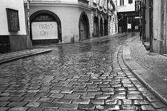 wet street in Prague (Istvan Penzes) Tags: bw white black analog prague prag neopan1600 leicam7 summicron50mm emofin aphog penzes