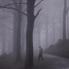 Leaving The Path (aha42   tehaha) Tags: winter people nature light 500x500 fog mist footpath walking man trees norway nikond40 bergen squareformat tåke nikoncapturenx2 nikkor50mmf14daf tobox