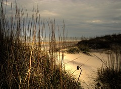 Cape Hatteras National Seashore (hburrussiii) Tags: ocean beach canon coast is nc sand dunes dune northcarolina powershot atlantic hatteras national shore cape coastline outer outerbanks seashore hdr banks obx s5 coquina 3xp photomatix mywinners aplusphoto banx platinumheartaward natureselegantshots rubyphotographer flickrclassique
