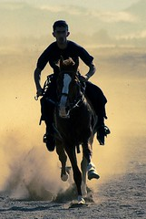 In The Desert (Shakir's Photography) Tags: horse race sand desert saudi arabia knight dust rider shanko
