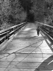Bridge (Adrienne Johnson SF) Tags: bridge trees bw monochrome kids shadows declan runaway samuelptaylorpark crossmarintrail