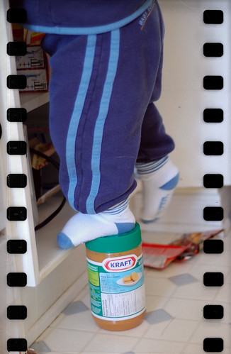 83:365 Mischief in the pantry