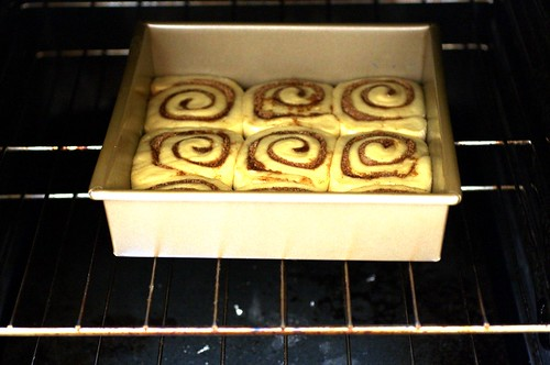 cinnamon buns in oven