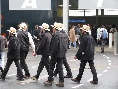 Amish in NY